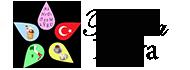 Scuola di lingua turca